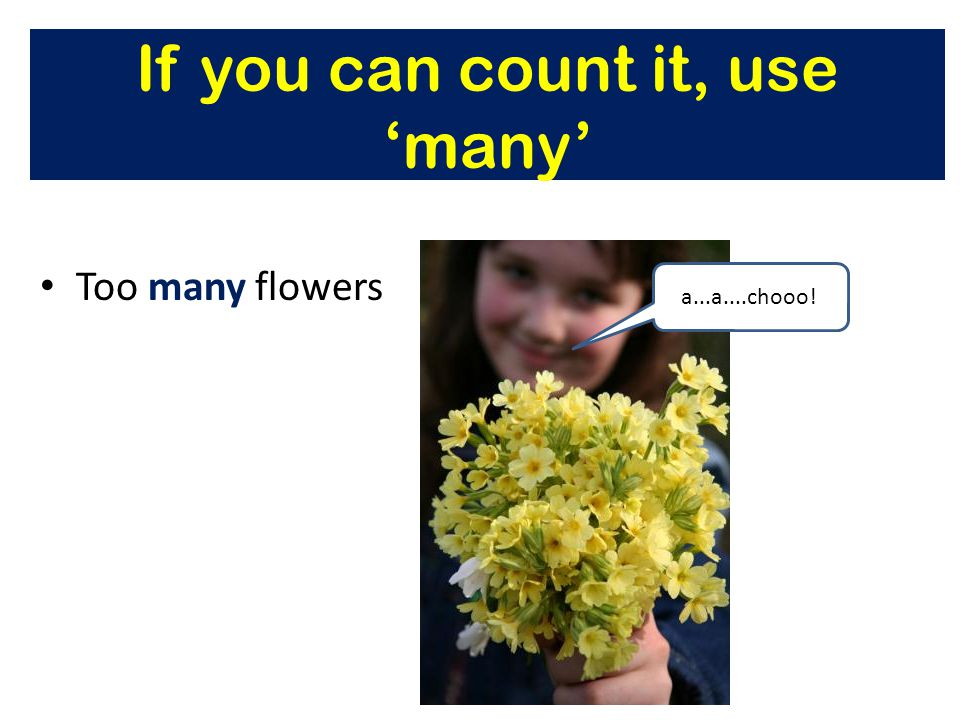 If you can count it, use 'many' Too many flowers a...a....chooo!