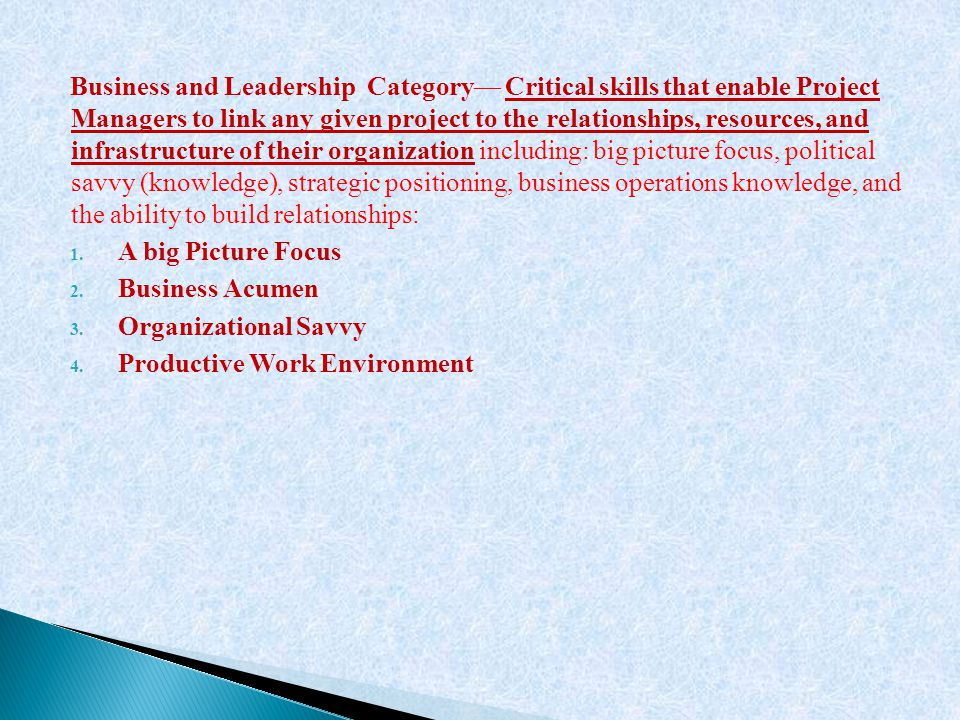 Business and Leadership Category— Critical skills that enable Project Managers to link any given project to the relationships, resources, and infrastr