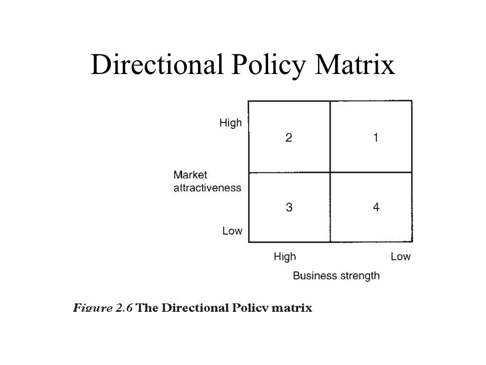 Directional Policy Matrix