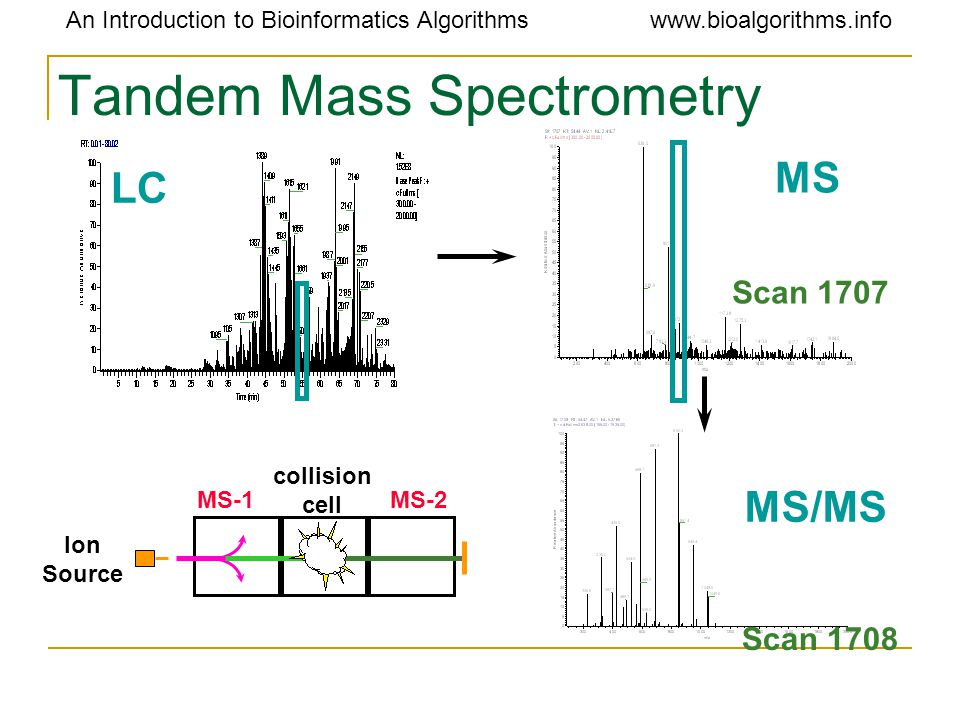 An Introduction to Bioinformatics Algorithmswww.bioalgorithms.info Tandem Mass Spectrometry Scan 1708 LC Scan 1707 MS MS/MS Ion Source MS-1 collision cell MS-2