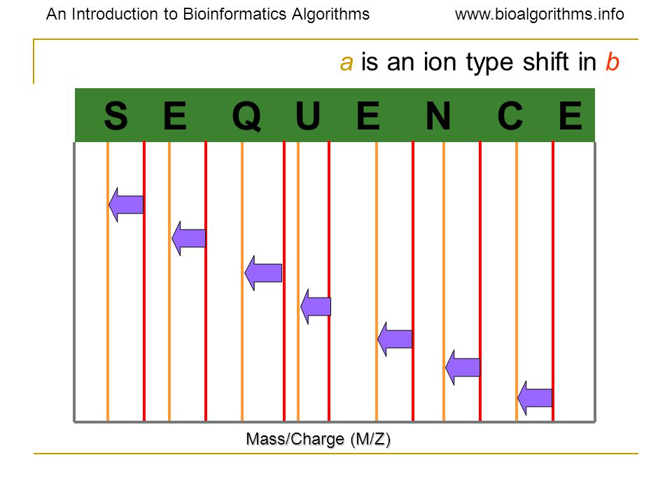An Introduction to Bioinformatics Algorithmswww.bioalgorithms.info S E Q U E N C E Mass/Charge (M/Z) a is an ion type shift in b