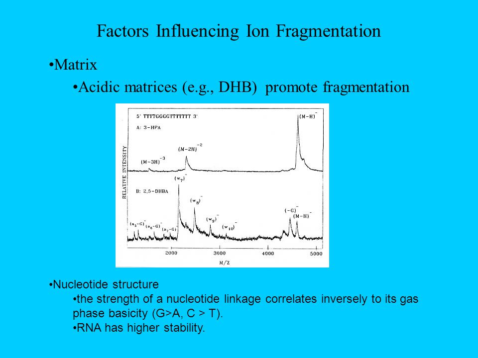 Factors Influencing Ion Fragmentation Matrix Acidic matrices (e.g., DHB) promote fragmentation Nucleotide structure the strength of a nucleotide linkage correlates inversely to its gas phase basicity (G>A, C > T).
