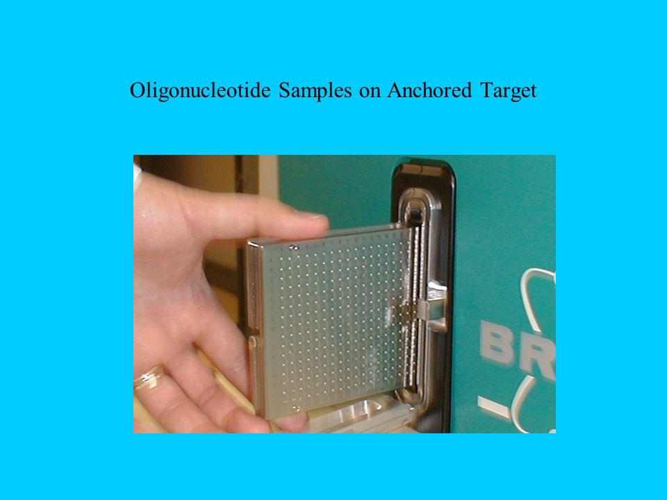 Oligonucleotide Samples on Anchored Target