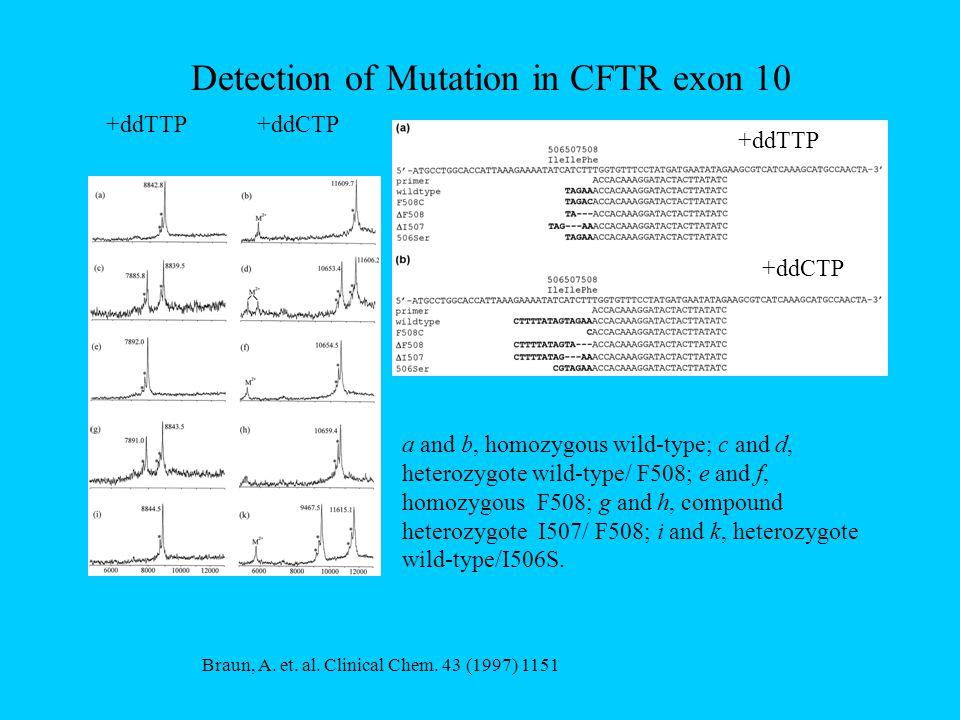 Detection of Mutation in CFTR exon 10 Braun, A. et.