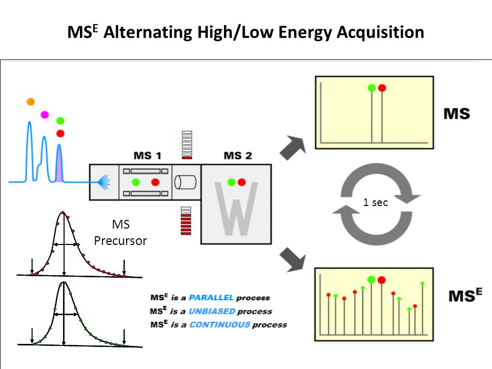 1 sec MS E Alternating High/Low Energy Acquisition MS Precursor MS E Fragments Retention Time