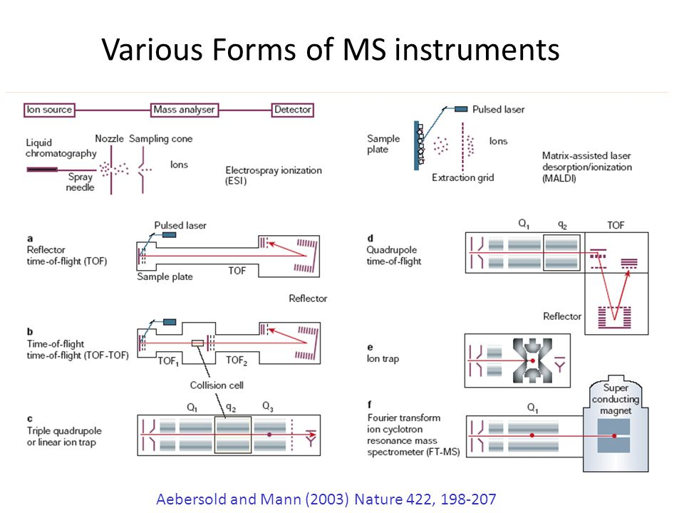 Various Forms of MS instruments Aebersold and Mann (2003) Nature 422, 198-207