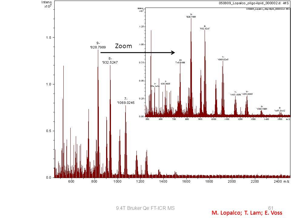 9.4T Bruker Qe FT-ICR MS61 Zoom M. Lopalco; T. Lam; E. Voss