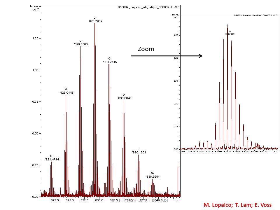 9.4T Bruker Qe FT-ICR MS Zoom M. Lopalco; T. Lam; E. Voss