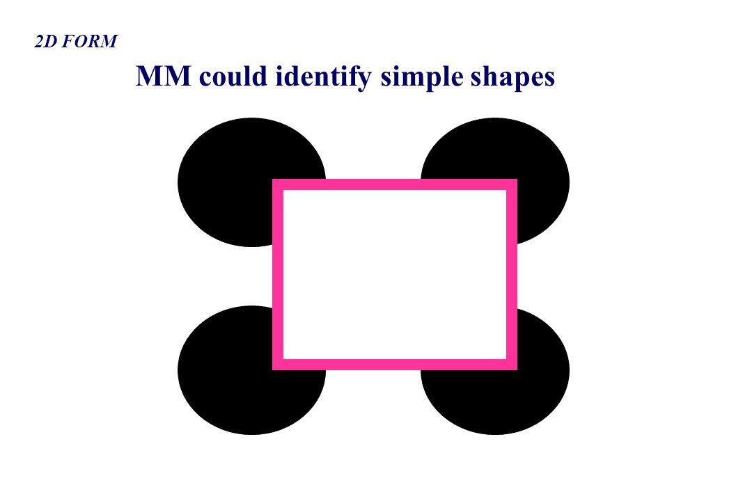 MM could identify simple shapes 2D FORM