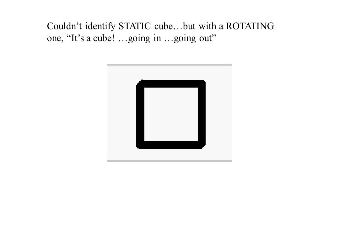 "Couldn't identify STATIC cube…but with a ROTATING one, ""It's a cube! …going in …going out"""