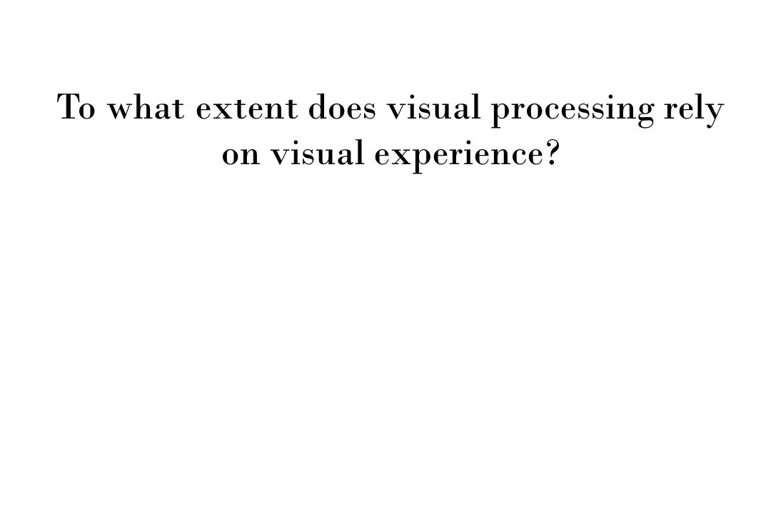 To what extent does visual processing rely on visual experience?