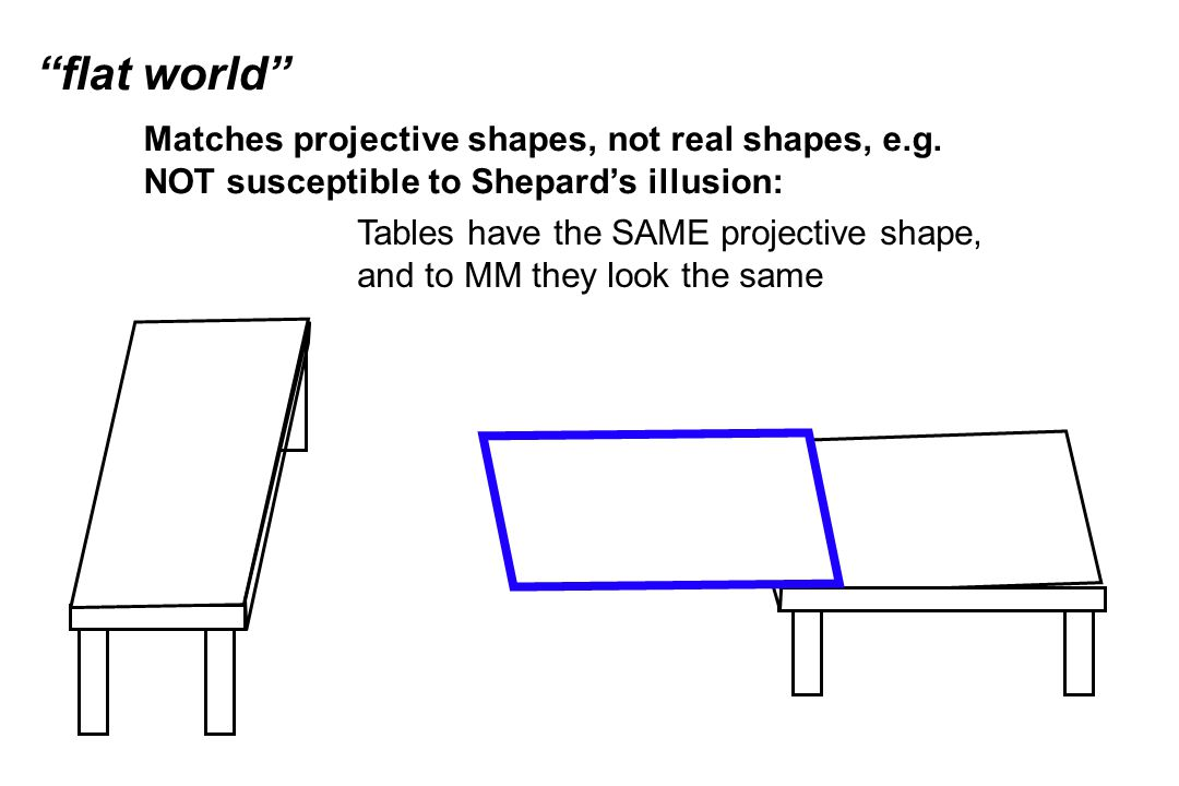 """flat world"" Matches projective shapes, not real shapes, e.g. NOT susceptible to Shepard's illusion: Tables have the SAME projective shape, and to MM"