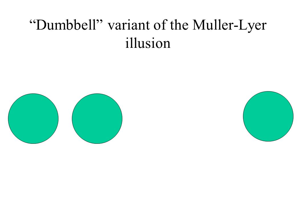 """Dumbbell"" variant of the Muller-Lyer illusion"