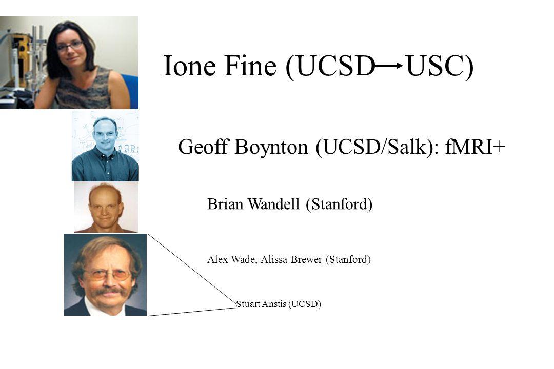 Ione Fine (UCSD USC) Geoff Boynton (UCSD/Salk): fMRI+ Brian Wandell (Stanford) Alex Wade, Alissa Brewer (Stanford) Stuart Anstis (UCSD)
