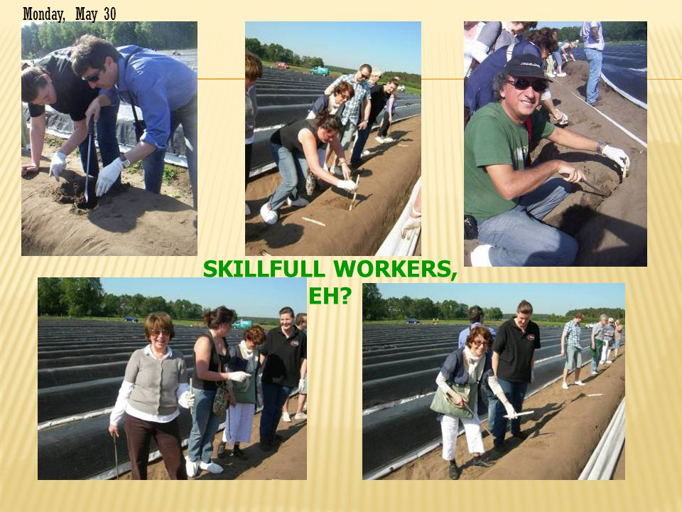 SKILLFULL WORKERS, EH? Monday, May 30