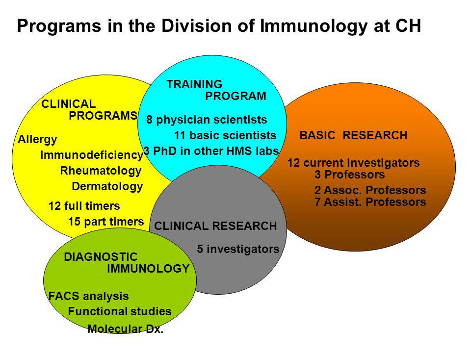 CLINICAL Allergy Immunodeficiency Rheumatology Dermatology TRAINING CLINICAL RESEARCH BASIC RESEARCH 8 physician scientists 11 basic scientists 12 cur
