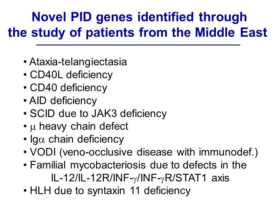 Novel PID genes identified through the study of patients from the Middle East Ataxia-telangiectasia CD40L deficiency CD40 deficiency AID deficiency SCID due to JAK3 deficiency  heavy chain defect Ig  chain deficiency VODI (veno-occlusive disease with immunodef.) Familial mycobacteriosis due to defects in the IL-12/IL-12R/INF-  /INF-  R/STAT1 axis HLH due to syntaxin 11 deficiency