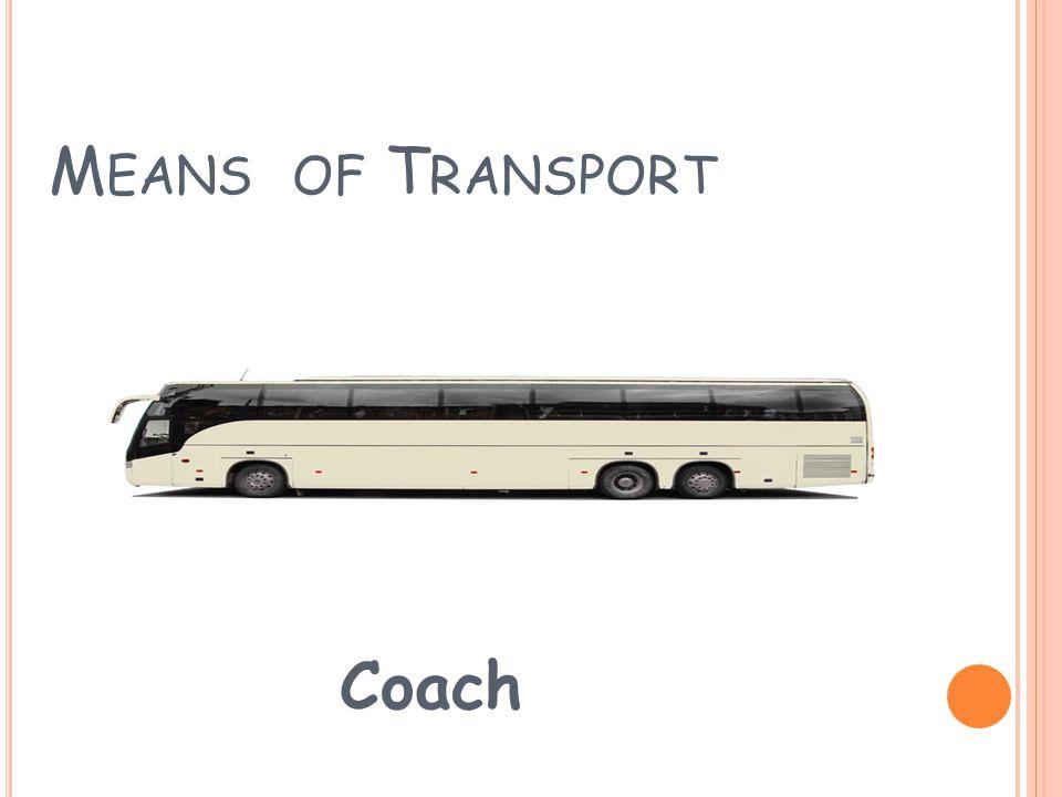 M EANS OF T RANSPORT Bus