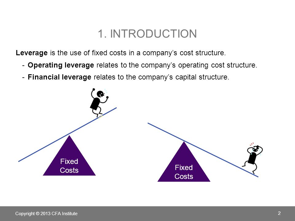 1. INTRODUCTION Leverage is the use of fixed costs in a company's cost structure. -Operating leverage relates to the company's operating cost structur