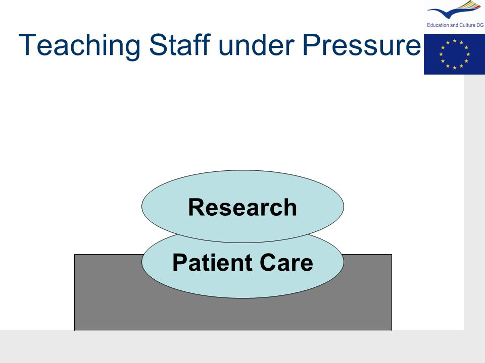 Teaching Staff under Pressure Patient Care Research