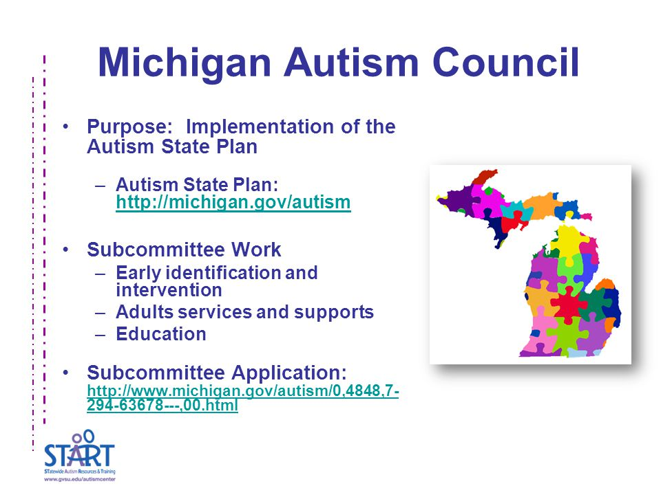 Michigan Autism Council Purpose: Implementation of the Autism State Plan –Autism State Plan: http://michigan.gov/autism http://michigan.gov/autism Subcommittee Work –Early identification and intervention –Adults services and supports –Education Subcommittee Application: http://www.michigan.gov/autism/0,4848,7- 294-63678---,00.html http://www.michigan.gov/autism/0,4848,7- 294-63678---,00.html