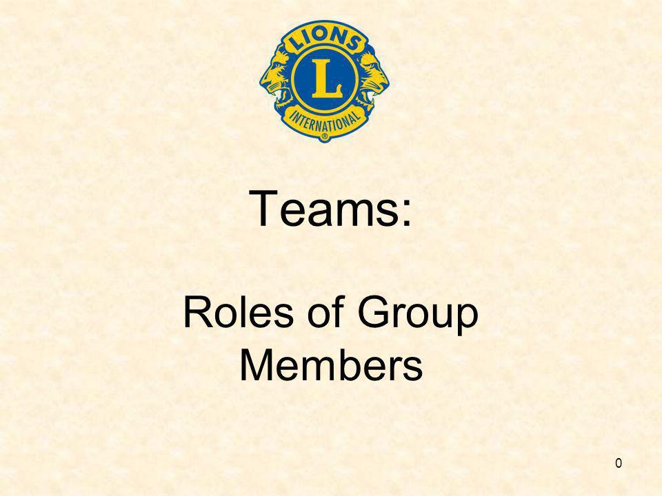 0 Teams: Roles of Group Members