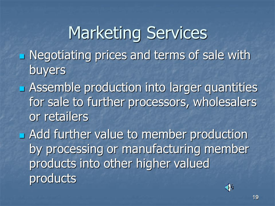 19 Marketing Services Negotiating prices and terms of sale with buyers Negotiating prices and terms of sale with buyers Assemble production into larger quantities for sale to further processors, wholesalers or retailers Assemble production into larger quantities for sale to further processors, wholesalers or retailers Add further value to member production by processing or manufacturing member products into other higher valued products Add further value to member production by processing or manufacturing member products into other higher valued products