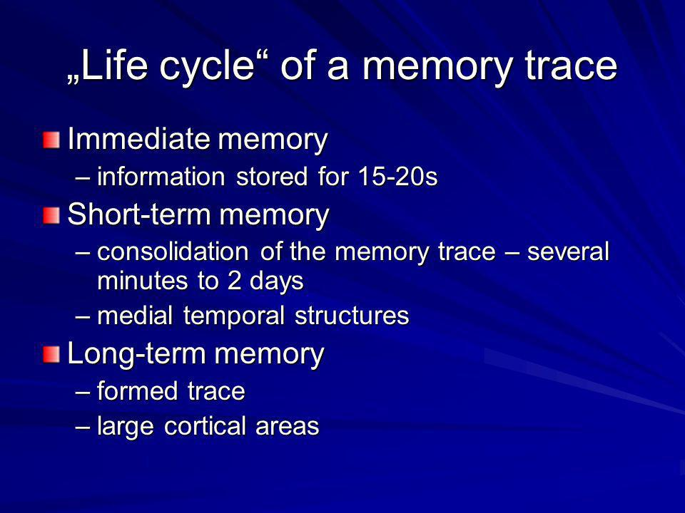 """""""Life cycle"""" of a memory trace Immediate memory –information stored for 15-20s Short-term memory –consolidation of the memory trace – several minutes"""