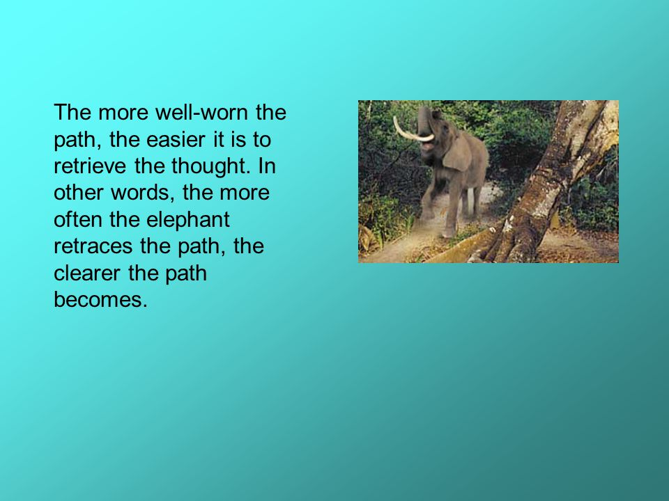 The more well-worn the path, the easier it is to retrieve the thought. In other words, the more often the elephant retraces the path, the clearer the