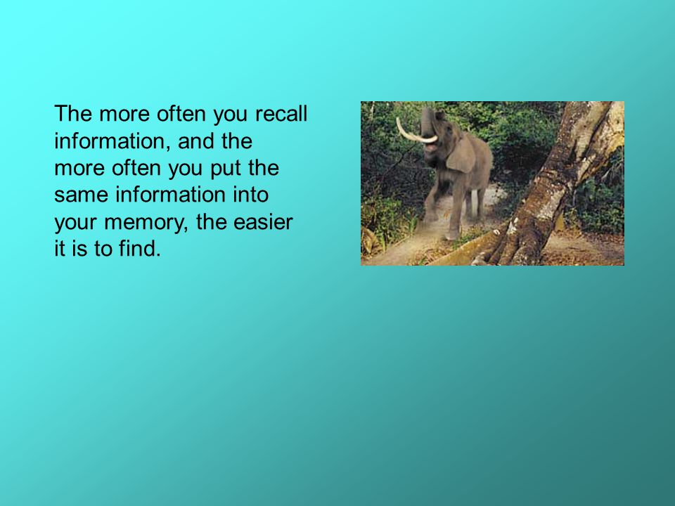 The second picture you can use to your advantage is the picture of many animals gathering at a clearing— like thoughts gathering at a central location in the memory.