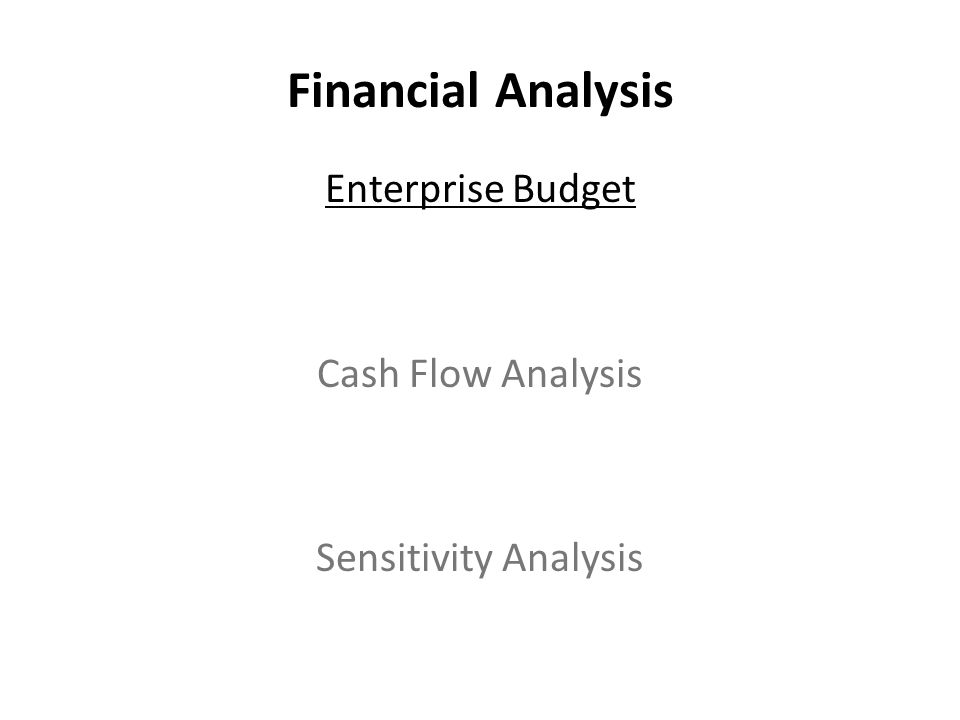 Financial Analysis Enterprise Budget Cash Flow Analysis Sensitivity Analysis