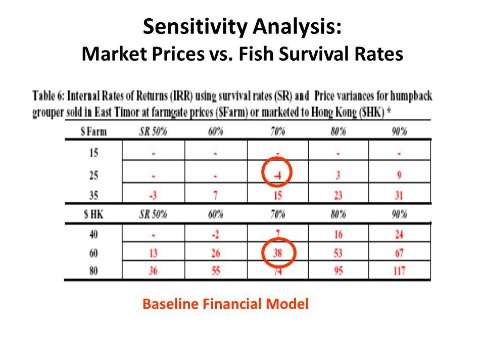 Baseline Financial Model