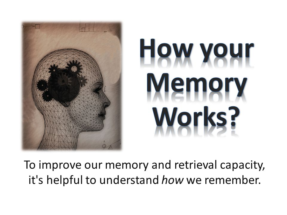 To improve our memory and retrieval capacity, it s helpful to understand how we remember.