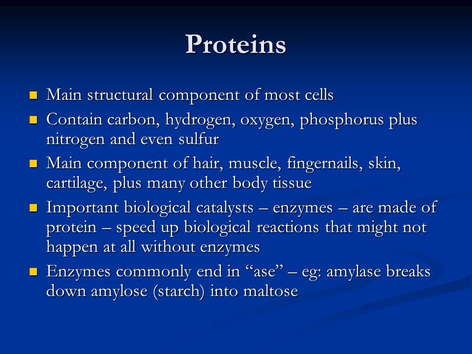 Proteins Main structural component of most cells Main structural component of most cells Contain carbon, hydrogen, oxygen, phosphorus plus nitrogen an