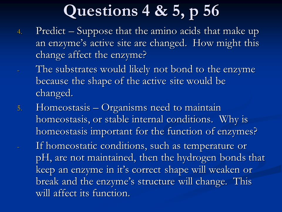Questions 4 & 5, p 56 4. Predict – Suppose that the amino acids that make up an enzyme's active site are changed. How might this change affect the enz