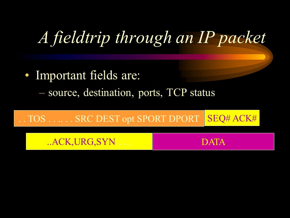 A fieldtrip through an IP packet Important fields are: –source, destination, ports, TCP status..