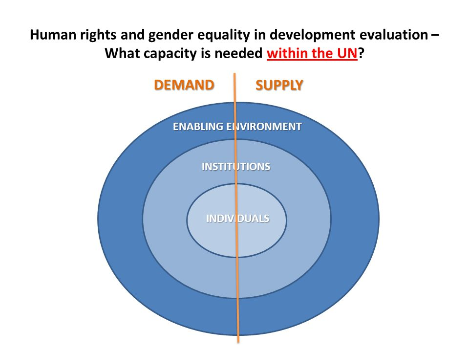 Human rights and gender equality in development evaluation – What capacity is needed within the UN.