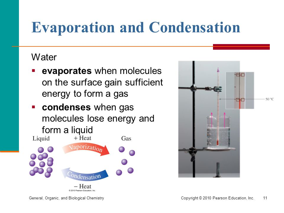General, Organic, and Biological ChemistryCopyright © 2010 Pearson Education, Inc.11 Evaporation and Condensation Water  evaporates when molecules on