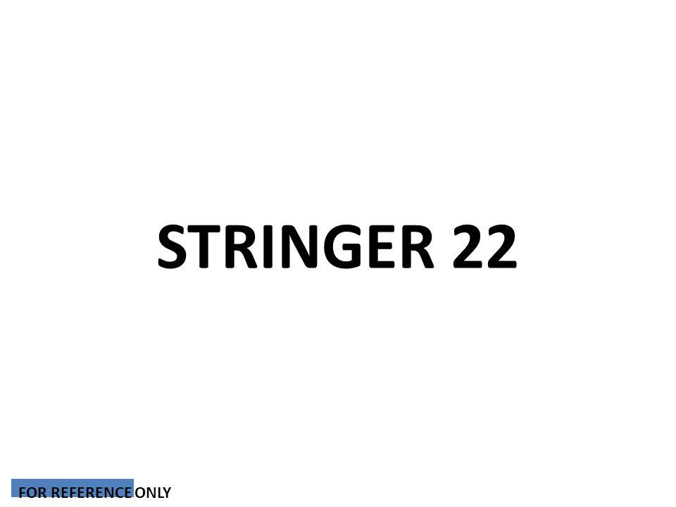 STRINGER 22 FOR REFERENCE ONLY