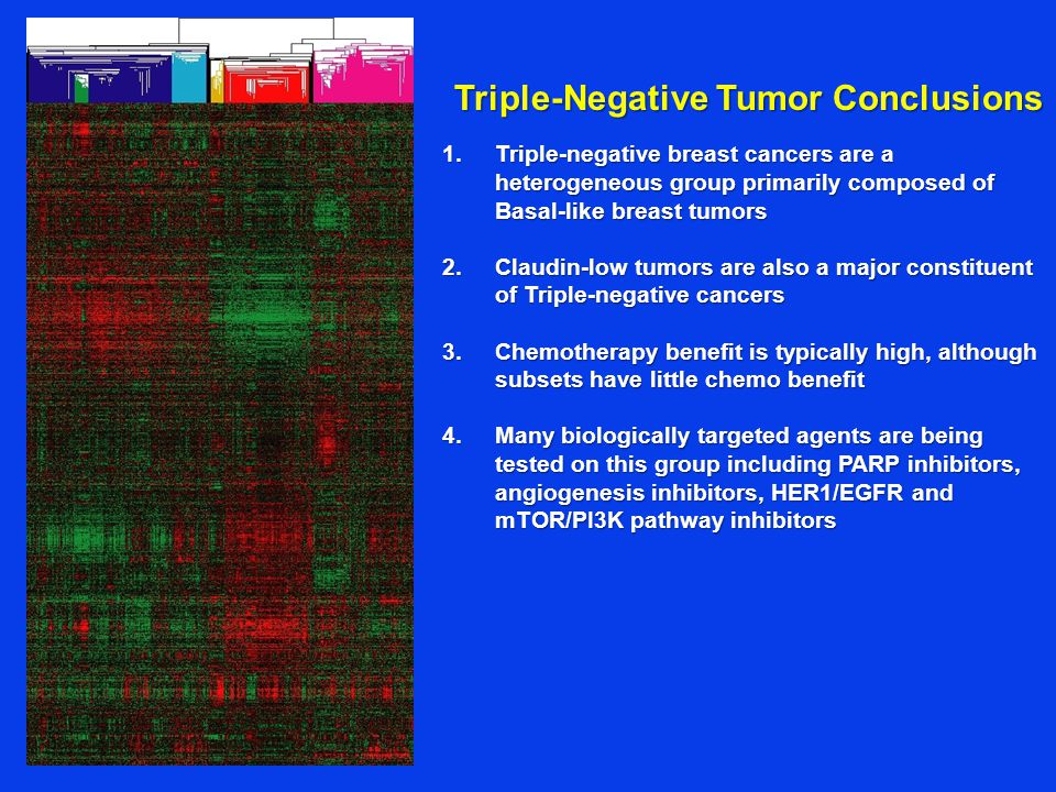 Triple-Negative Tumor Conclusions 1.Triple-negative breast cancers are a heterogeneous group primarily composed of Basal-like breast tumors 2.Claudin-low tumors are also a major constituent of Triple-negative cancers 3.Chemotherapy benefit is typically high, although subsets have little chemo benefit 4.Many biologically targeted agents are being tested on this group including PARP inhibitors, angiogenesis inhibitors, HER1/EGFR and mTOR/PI3K pathway inhibitors