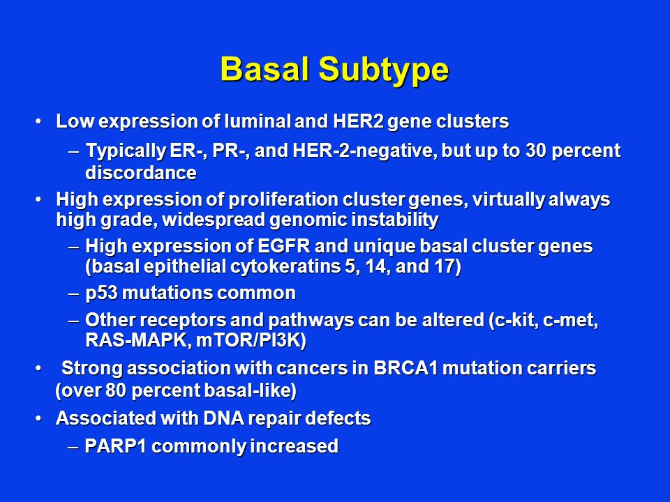 Basal Subtype Low expression of luminal and HER2 gene clustersLow expression of luminal and HER2 gene clusters –Typically ER-, PR-, and HER-2-negative, but up to 30 percent discordance High expression of proliferation cluster genes, virtually always high grade, widespread genomic instabilityHigh expression of proliferation cluster genes, virtually always high grade, widespread genomic instability –High expression of EGFR and unique basal cluster genes (basal epithelial cytokeratins 5, 14, and 17) –p53 mutations common –Other receptors and pathways can be altered (c-kit, c-met, RAS-MAPK, mTOR/PI3K) Strong association with cancers in BRCA1 mutation carriers (over 80 percent basal-like)Strong association with cancers in BRCA1 mutation carriers (over 80 percent basal-like) Associated with DNA repair defectsAssociated with DNA repair defects –PARP1 commonly increased