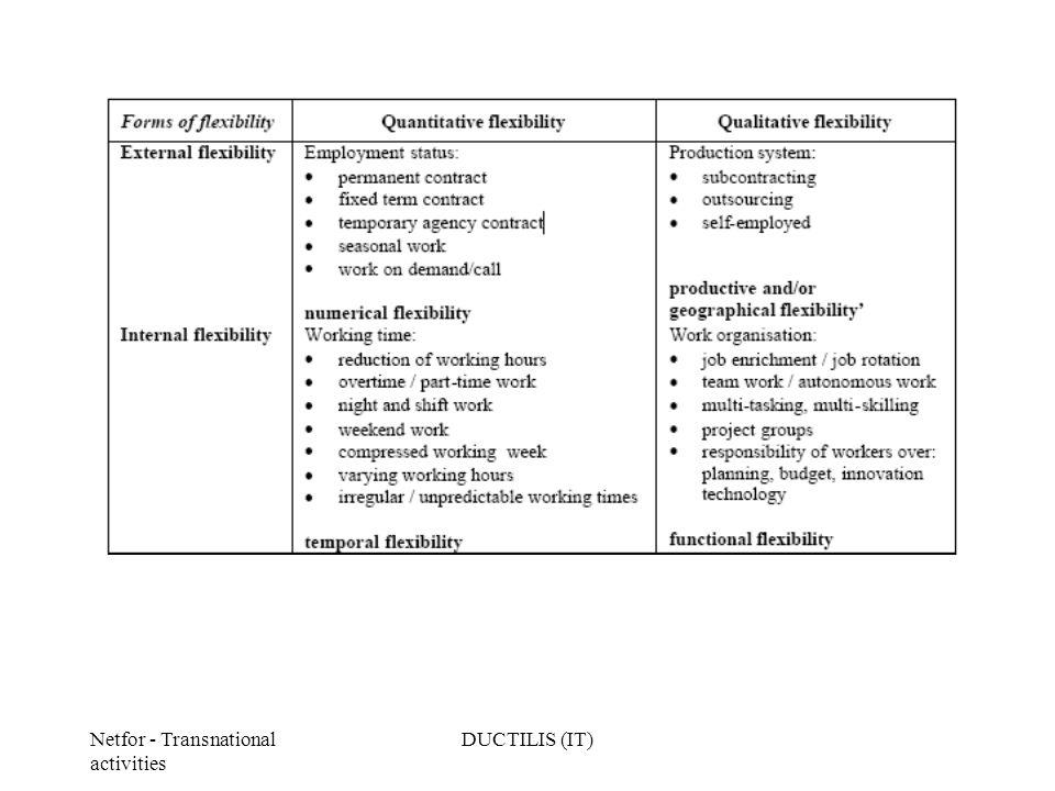 Netfor - Transnational activities DUCTILIS (IT)