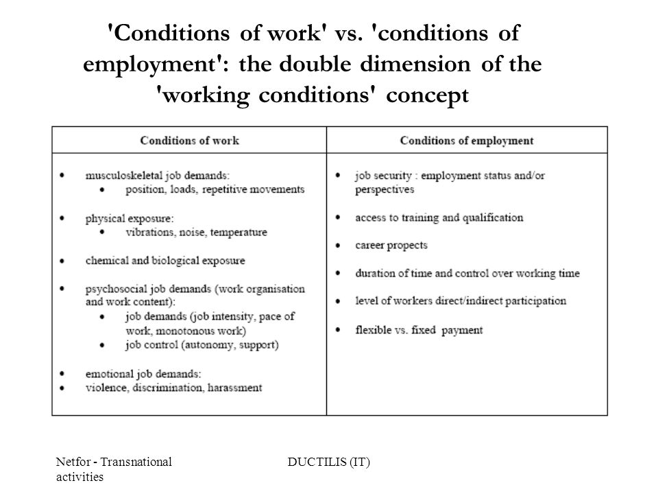 Netfor - Transnational activities DUCTILIS (IT) Conditions of work vs.