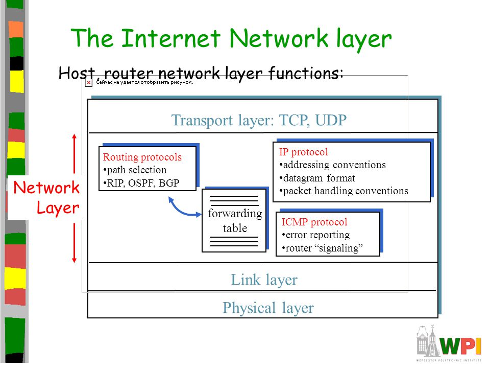 The Internet Network layer forwarding table Host, router network layer functions: Routing protocols path selection RIP, OSPF, BGP IP protocol addressi