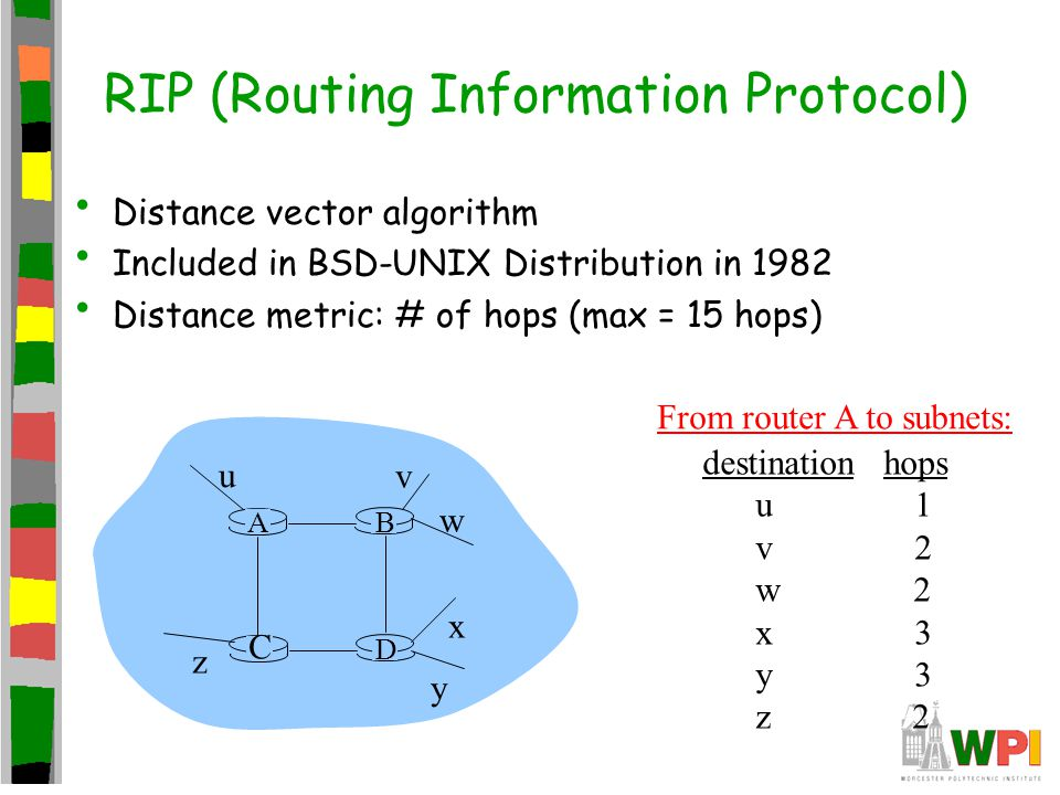 RIP (Routing Information Protocol) Distance vector algorithm Included in BSD-UNIX Distribution in 1982 Distance metric: # of hops (max = 15 hops) D C