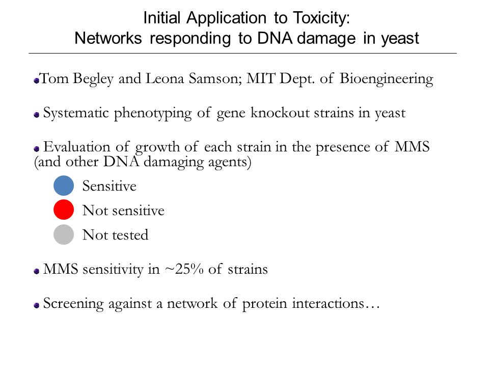Initial Application to Toxicity: Networks responding to DNA damage in yeast Tom Begley and Leona Samson; MIT Dept.