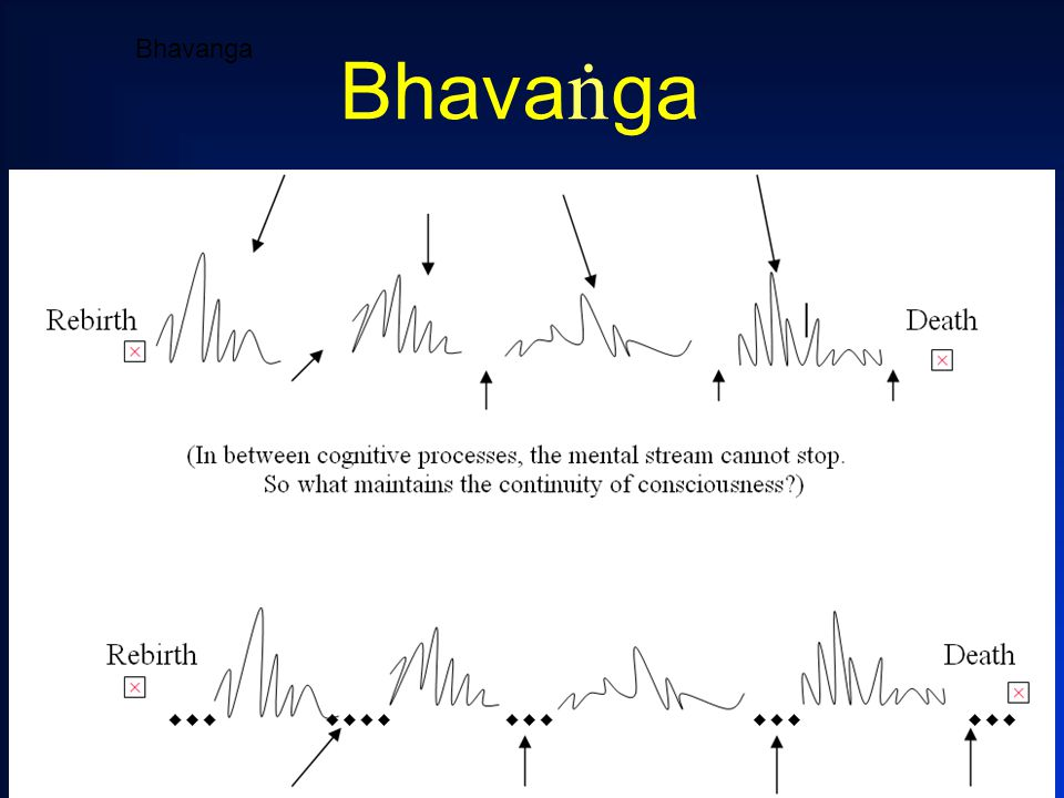 3 Bhavanga Bhava ï ga