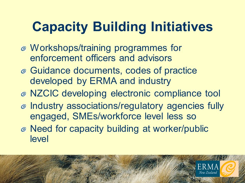 Capacity Building Initiatives Workshops/training programmes for enforcement officers and advisors Guidance documents, codes of practice developed by ERMA and industry NZCIC developing electronic compliance tool Industry associations/regulatory agencies fully engaged, SMEs/workforce level less so Need for capacity building at worker/public level