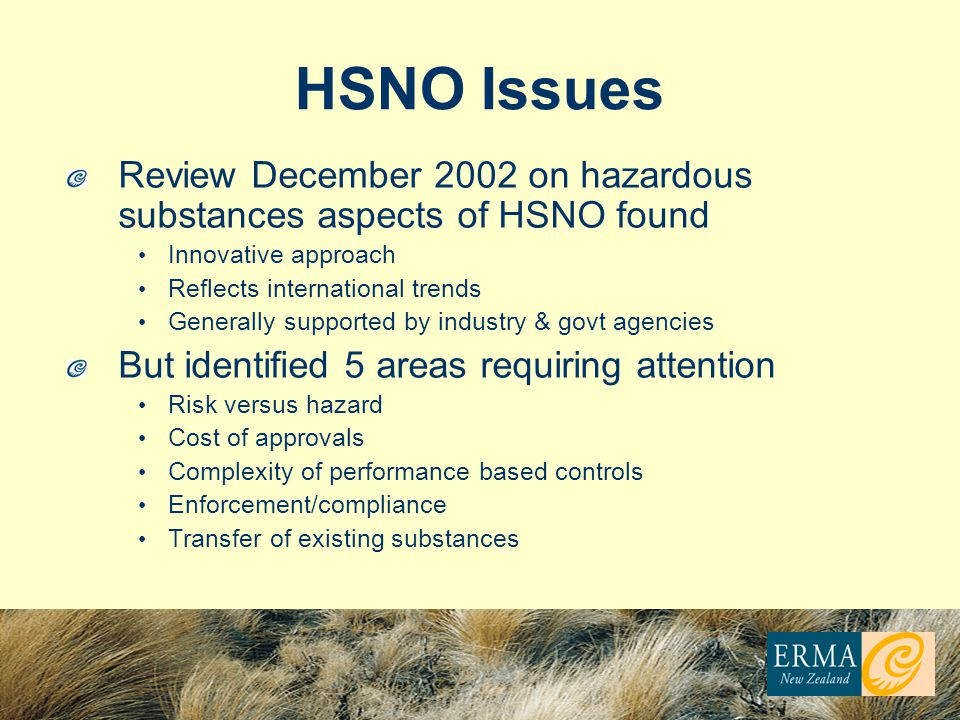 HSNO Issues Review December 2002 on hazardous substances aspects of HSNO found Innovative approach Reflects international trends Generally supported by industry & govt agencies But identified 5 areas requiring attention Risk versus hazard Cost of approvals Complexity of performance based controls Enforcement/compliance Transfer of existing substances