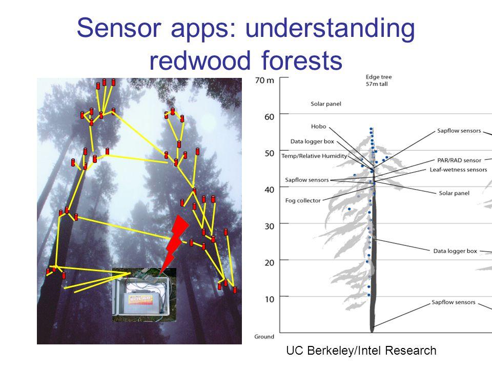 Sensor apps: understanding redwood forests UC Berkeley/Intel Research